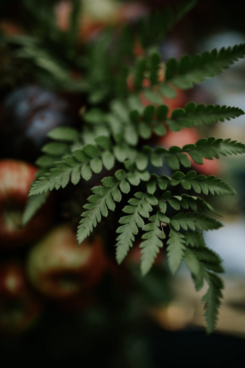 A detail image of a small fern in a wedding bouquet